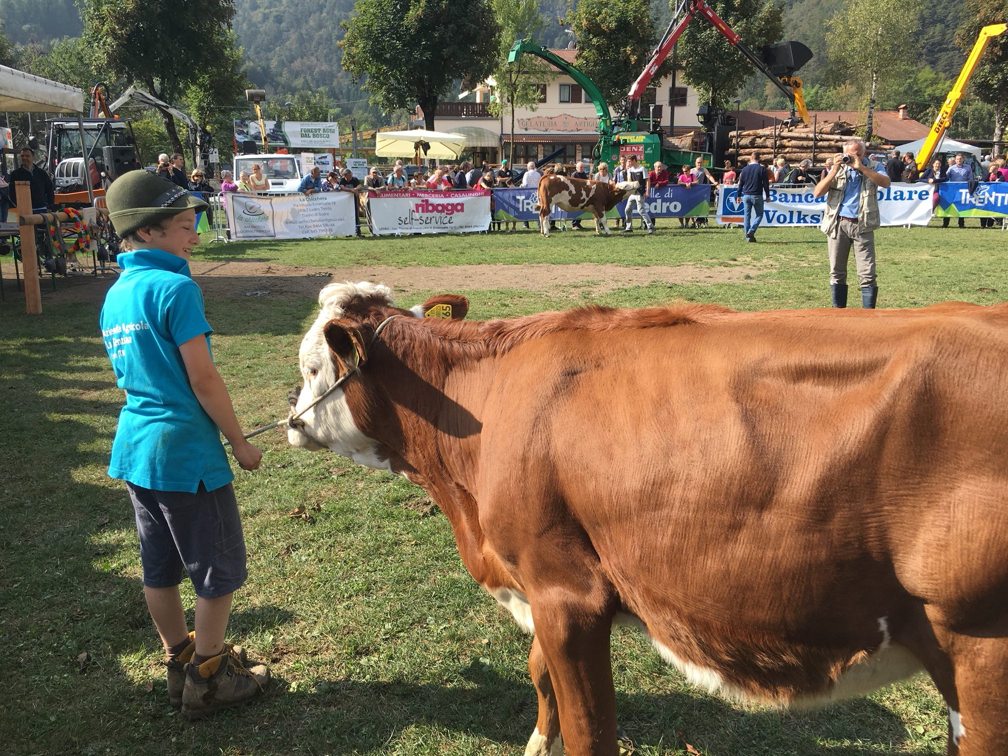 San Michele local fair: who will be the best of the livestock all?
